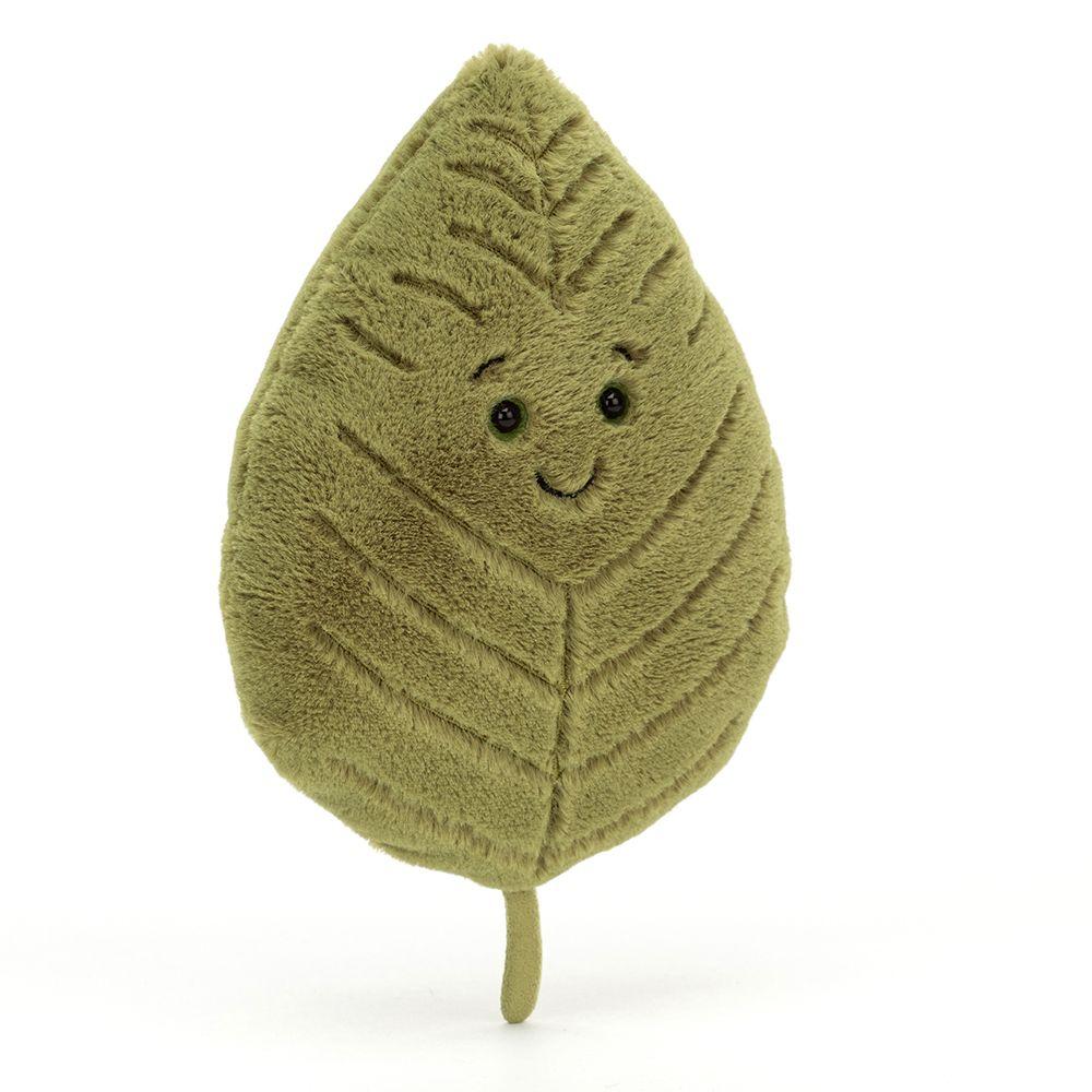 Woodland Beech Leaf
